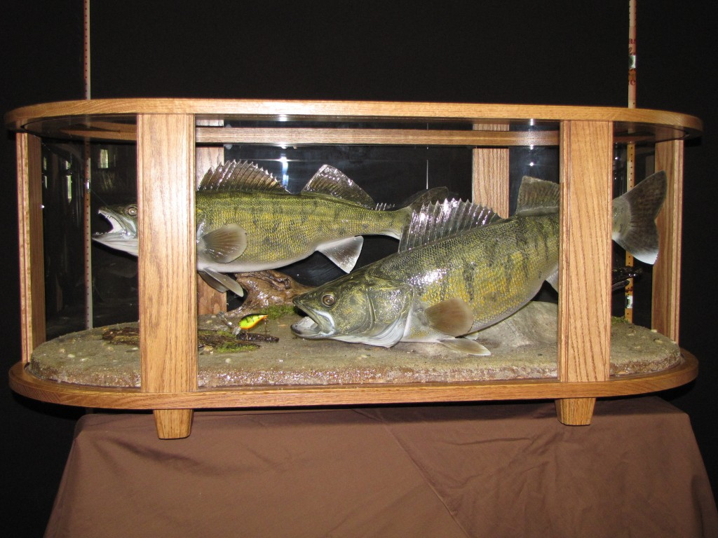 Coffee Table Fish Mount Dan 39 S Wildlife Creations Taxidermy Studio