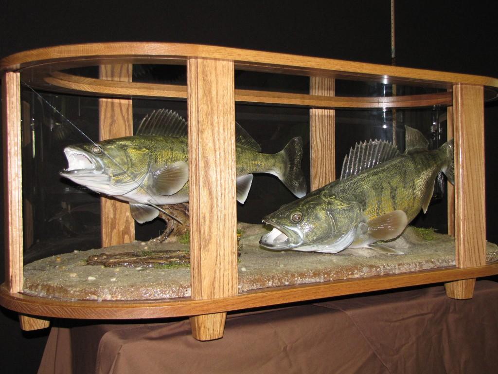 Coffee Table Fish Mount Dan S Wildlife Creations